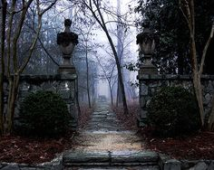 """Enchanting garden path shot taken at """"Swan House"""", headquarters of the Atlanta History Center in the historic Buckhead district of Atlanta. This late 1920s estate and garden, designed by local golden-boy architect Phillip Trammel Schutze, is truly the city's treasure."""
