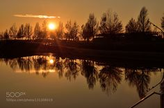golden pond by Arcos. Please Like http://fb.me/go4photos and Follow @go4fotos Thank You. :-)