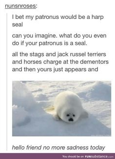 Harry Potter patronus <--- yes but is that not the point. Go away fun sucking dementor. Today will be happy. Fluff off.