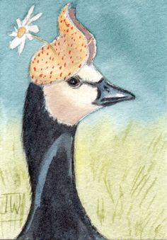 Barnacle goose wearing a summer hat
