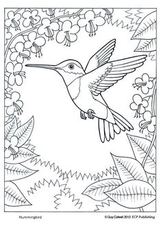 adult coloring pages patterns - Google Search