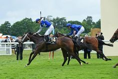 Tepin defeated some of Europe's top milers at their own game June 14 at Royal Ascot when she scored a half-length victory in the Queen Anne Stakes (Eng-I).