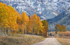 Journey to Nowhere by Michael  Greene on 500px The road leading to the Silver Jack Reservoir helps lead the viewer through this scene captured in the heart of the Uncompahgre National Forest amidst spectacular fall conditions