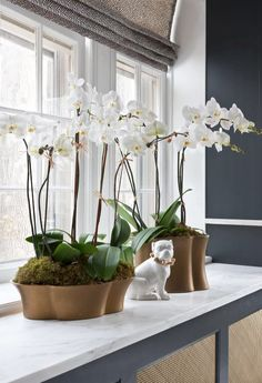 Orchids perfect this window detail.
