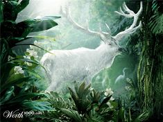 The Oak and the Antler: Spirit of the Forest - The White Stag