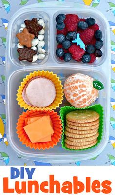 Crackers + Chesse Slices + Lunch Meat Slices + Orange + Blueberries + Strawberries + Cookies + Yogurt Covered Raisins