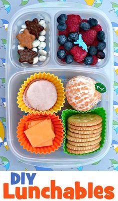 Crackers + Chesse Slices + Lunch Meat Slices + Orange + Blueberries + Strawberries + Cookies + Yogurt Covered Raisins