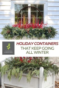 I love doing winter container designs. Sure they have a certain holiday bent to them but they stay up usually until March at my house because it offers some color in a world of gray and white. #theimpatientgardener #christmas #winter #containers Container Design, Container Plants, Container Gardening, Plant Containers, Christmas Wall Hangings, Christmas Decorations, Christmas Porch, Rustic Christmas, Gardening For Beginners