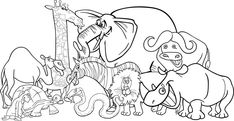 Black and White Cartoon Illustration of Funny African Safari Wild Animals Group for Coloring Book Stock Photo - 17357049 Baby Zoo Animals, Cute Wild Animals, Safari Animals, Caracal, Zoo Animal Coloring Pages, Coloring Books, Coloring Sheets, Kids Coloring, Acacia