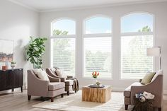 "Graber Blinds 3"" Sheer Shades with Continuous-Loop Lift: Glessner, Portico 6101"
