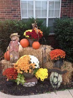 My Fall yard