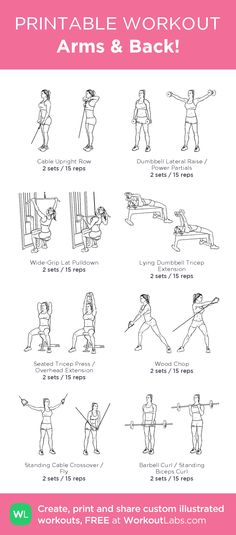Arms & Back!: my visual workout created at WorkoutLabs.com • Click through…