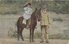 New York Bronx Zoo Pony - Vintage 1920s Horse Postcard.
