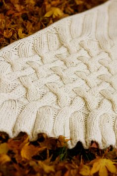 Drift Cabled Shawl or Baby Blanket  http://tincanknits.com/pattern-GWN-drift.html
