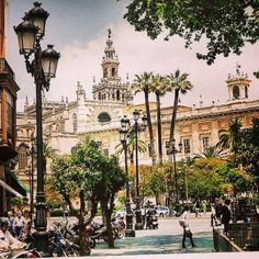 ¡Buenos días a tod@s desde #Sevilla! Great Places To Travel, Study Spanish, Big Town, Study Abroad, Cities, Around The Worlds, Street View, Beautiful, Ideas