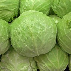 4 Reasons To Eat Cabbage - Dr. Weil's Weekend Tip
