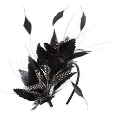 Nerida Fraiman Feather Headband ($210) ❤ liked on Polyvore featuring accessories, hair accessories, head, hair, hats, feather headband, hair band headband, headband hair accessories, hair band accessories and silk headband