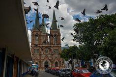 Esta calle está en el ciudad Medellin.Ahora es uno de los lugares más peligrosos del mundo