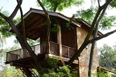 Offering a garden, Wilpattu Tree House is set 1640 feet from Wilpattu. Anuradhapura is 17 mi away. House On Stilts, Sri Lanka, My House, Building A House, Pergola, Home And Family, Deck, Outdoor Structures, Cabin