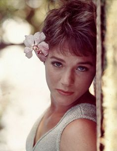 Julie Andrews  ---turns out that if I was a born in an earlier time I would have had a major crush on Mary Poppins! Whoa