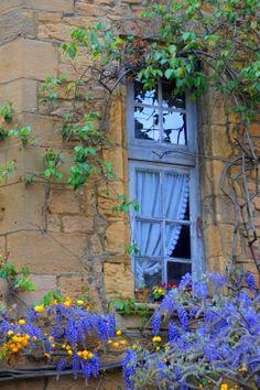 windows painted the color of wisteria Garden Windows, Windows And Doors, Ventana Windows, Purple Home, Window View, Window Dressings, Through The Window, Old Doors, Window Boxes