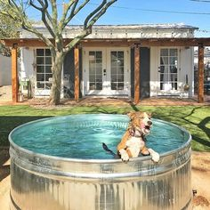 Stock tank pools are the new stylish adult kiddie pools. HGTV rounds up the best stock tank pool ideas. Above Ground Pool Cost, In Ground Pools, Stock Pools, Stock Tank Pool, Mini Pool, Decks, Galvanized Stock Tank, Pool Kits, Kiddie Pool