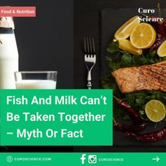 Myth or fact High Protein Recipes, Protein Foods, Weak Immune System, Prevent Diabetes, Food Combining, Milk Cans, Dietitian, Food Allergies, Nutrition