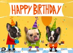 Trendy birthday wishes for a friend funny dog ideas Birthday Message For Husband, Birthday Presents For Dad, Birthday Quotes For Her, Birthday Week, Birthday Messages, Friend Birthday, Birthday Wishes, Funny Birthday, Birthday Ideas