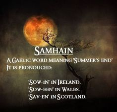 Gaelic Words More