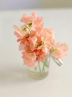 Flower Friday - Bloglovin