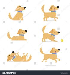 Find Set Dog Poses Vector Illustration stock images in HD and millions of other royalty-free stock photos, illustrations and vectors in the Shutterstock collection. Puppy Room, Dog Poses, Dog Illustration, Cartoon Design, Watercolor Cards, Cartoon Drawings, Cute Cartoon, New Pictures, Royalty Free Photos