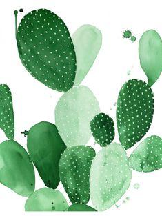 Green Paddle Cactus II Print