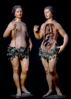 Ancient medical mannequins