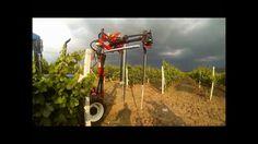 AGRICULTURAL     MACHINE    VINE