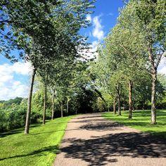 Perfect Minnesota day. #lakeminnetonka #minnesota #mn #exploremn #orono #lake #minnetonka #tonka #mnlakelife #lakelife #sky #clouds #nature #summer #oronomn #trees #bluesky #beautiful #windy