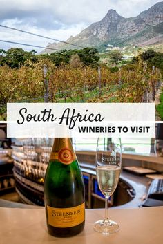 Exploring the South Africa Wine Region Visiting wineries in South Africa is a great way to spend a weekend. From Stellenbosch to Hemel-en-Aarde, there are many wineries to visit and wines to try. South Africa Honeymoon, Cape Town South Africa, South Africa Safari, East Africa, South African Wine, Chobe National Park, African Safari, Africa Travel, The Places Youll Go