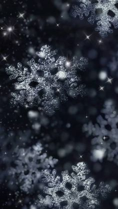 Night glittering snowflakes