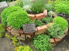 "The Herb Spiral. If you haven't seen one yet you may be wondering, ""What the heck is an herb spiral?"" It's a type of herb garden that allows you to: grow more plants in a smaller space grow […] Herb Spiral, Spiral Garden, Small Herb Gardens, Outdoor Gardens, Vertical Gardens, Small Outdoor Herb Garden Ideas, Garden Ideas With Bricks, Herb Garden Design, Garden Oasis"