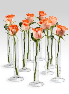 $4 each - Avoid having to figure out a difficult flower arrangement. A grouping of bud vases with either one kind of flower or a mix of flowers is easy and economical. We love this