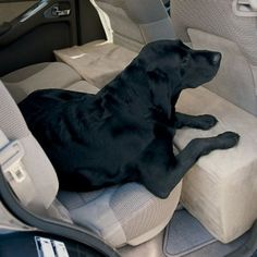 Dog Travel Accessory / Solid Foam Microfiber Backseat Extender -- Orvis from Orvis. Dog Travel Accessories, Dog Car Seats, Car Dog Bed, Dog Care, Fur Babies, Dogs And Puppies, Your Pet, Diy Dog, 150 Lbs