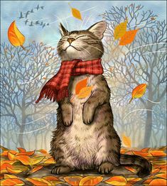 55 trendy ideas for cats illustration love drawings I Love Cats, Cute Cats, Funny Cats, Crazy Cat Lady, Crazy Cats, Fall Cats, Dibujos Cute, Here Kitty Kitty, Kitty Cats