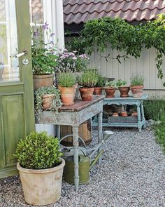 Beautiful setting for Potting if you have a Potting Shed. I love the gravel and the Country French look.