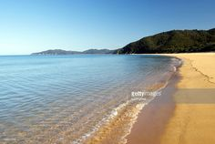 View top-quality stock photos of Totaranui Seascape Abel Tasman National Park New Zealand. Find premium, high-resolution stock photography at Getty Images. Canvas Art Prints, Canvas Wall Art, Abel Tasman National Park, Y Image, Sustainable Forestry, Kiwiana, Canvas Frame, New Zealand, National Parks