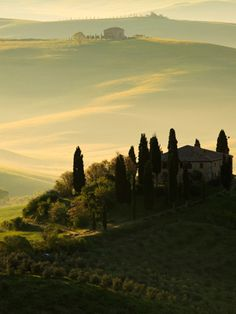 Tuscany, Italy. Someday I will have a cottage here with a red roof. Yes I will.