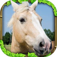 ultimate horse simulator 1.1 apk