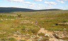 Mountain biking (11) | Saariselkä, Kona Shop Saariselkä: Rent or buy a bike and excursions from www.saariselka.com/kona.shop #mtb #mountainbiking #maastopyoraily #maastopyöräily #saariselkämtb #saariselkä #saariselka #saariselankeskusvaraamo #saariselkabooking #astueramaahan #stepintothewilderness #lapland