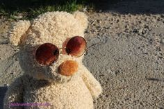 Valentine day is coming! Teddy Bear Took Sunglasses from Shades Emporium Costa Sunglasses Ray-Ban #teddybear #took #sunglasses #sunglasses #shadesemporium #valentinedayiscoming