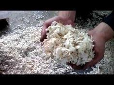 wood crusher machine for making wood shavings Website: http://www.biomassmachines.com/   Our wood crusher machine is making wood log,wood branch into sawdust. Whatsapp/Tel: +8615736766207