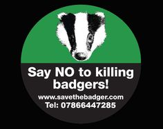 Save The Badger