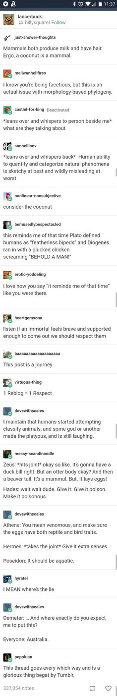 This post is a journey xD